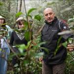 Андрей Николаевич Кузнецов проводит ботаническую экскурсию по тропическому горному лесу