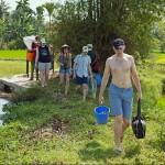 Экскурсия по пресноводной фауне на рисовом поле