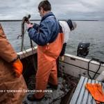 Подготовка к тралению, Балтийский залив
